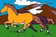 Beautiful Horses Coloring