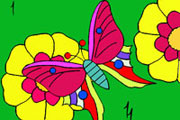 Colorful Butterfly Coloring