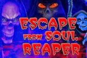 Escape from Soul Reaper
