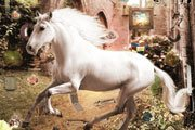 Hidden Object Majestic Mares