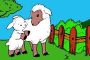 Sweet Sheep Coloring